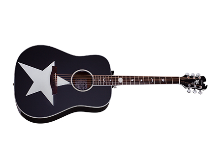 Robert Smith RS-1000 Stage Acoustic