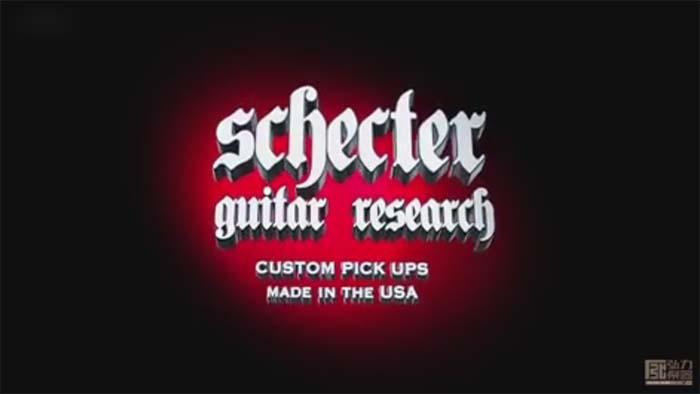 Schecter Custom Shop Pickups